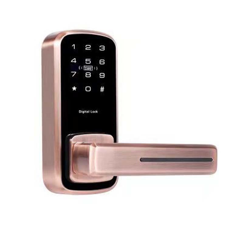 Intelligent front door lock with code small type password keypad
