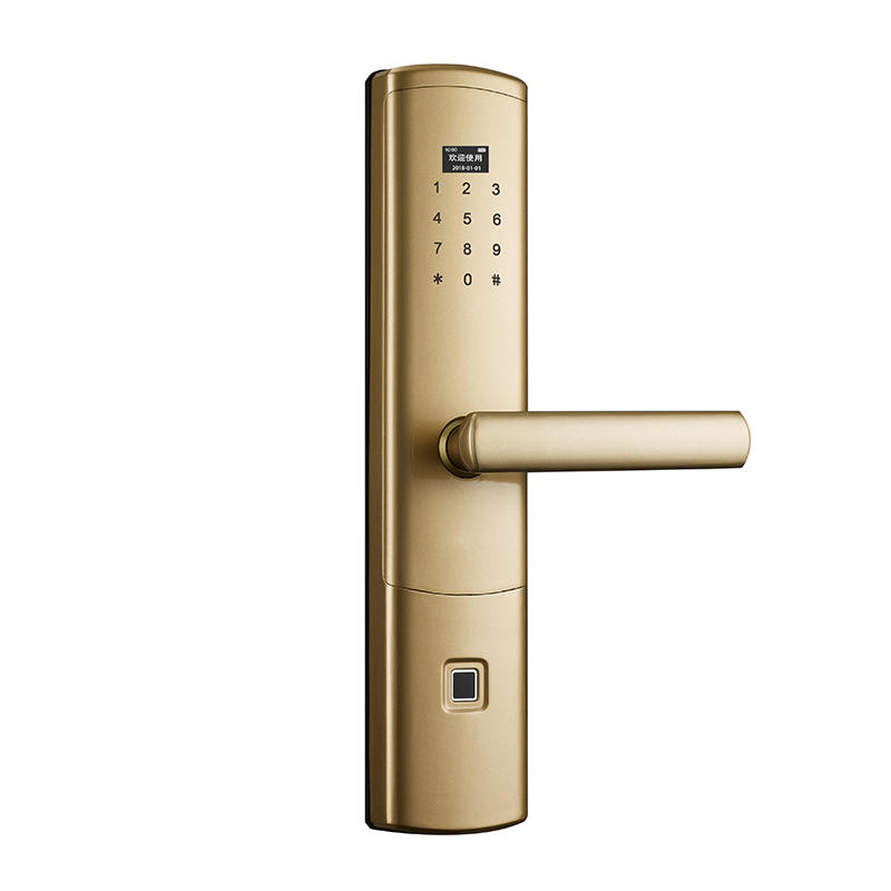Electronic Keypad Deadbolt Keyless Door Lock with Wifi function