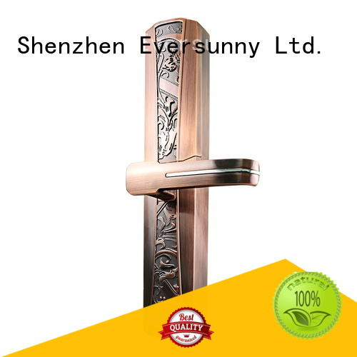 Eversunny intelligent front door keyless entry factory price for cottage